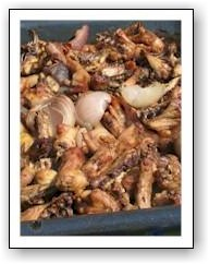 roast chicken bits for stock